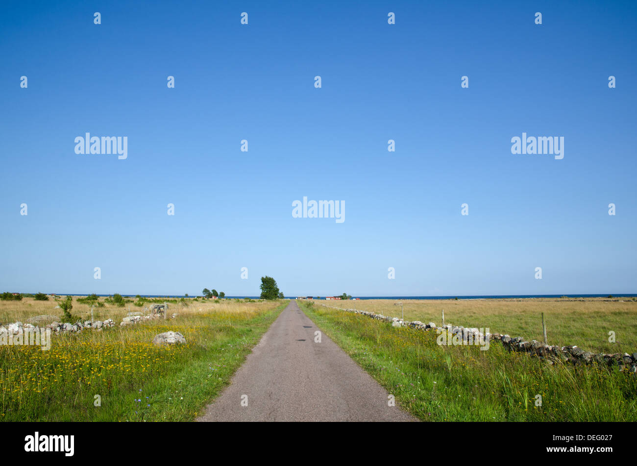 Straight summer road to the sea - Stock Image