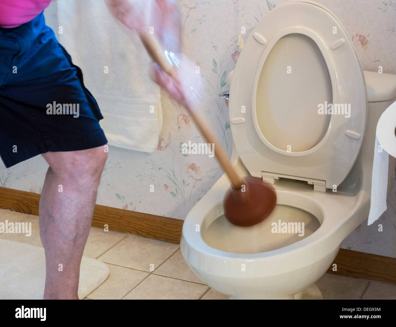 Man with Plunger Unclogging Residential Toilet, USA Stock Photo ...