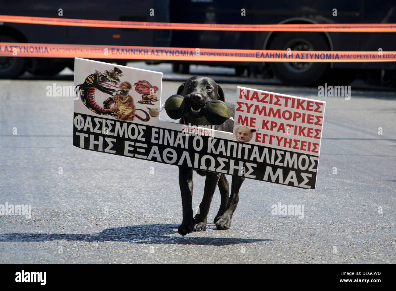 Athens, Greece, September 18th 2013. Greek public sector goes on 48 hour strike to protest against layoffs. A protest dog, in front of police lines, carries a placard that reads, 'Fascism is capitalism of our pauperization'. Credit:  Nikolas Georgiou / Alamy Live News - Stock Image