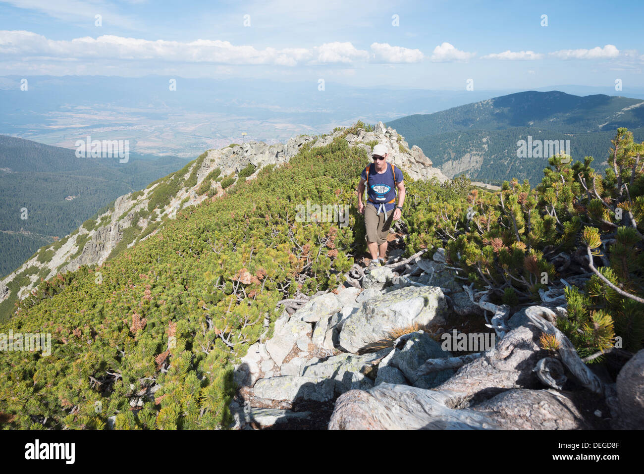Hiker on trail, Pirin National Park, UNESCO World Heritage Site, near Bansko, Bulgaria, Europe - Stock Image