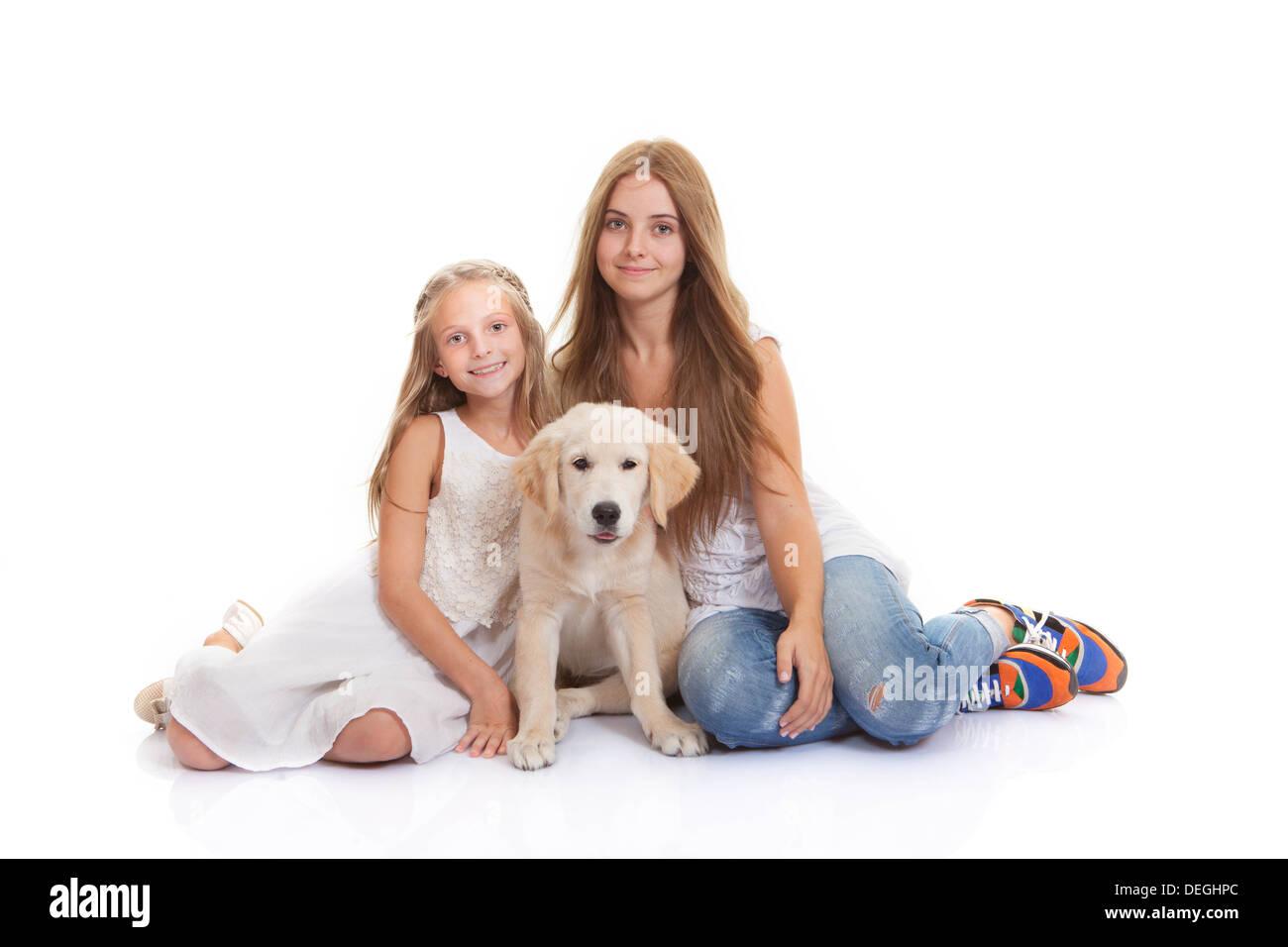 family pet Labrador retriever puppy - Stock Image