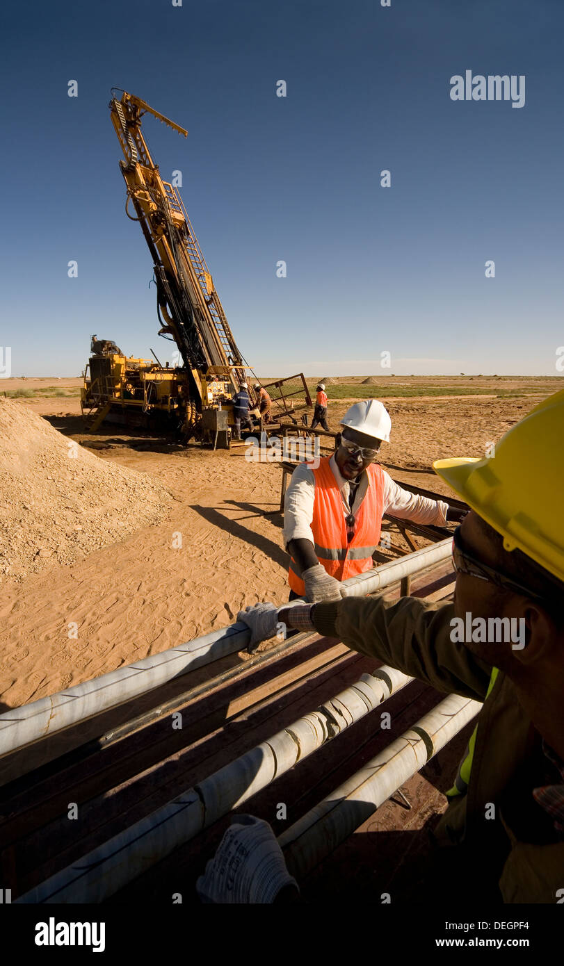 Across core trays with samples from exploration drill rig before logging by geologists, surface gold mine, Mauritania, NW Africa - Stock Image