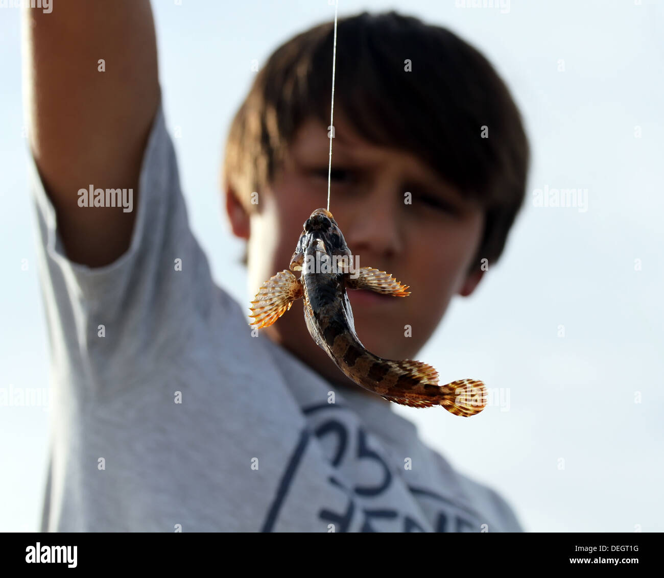 Boy with little fish caught on hook - Stock Image