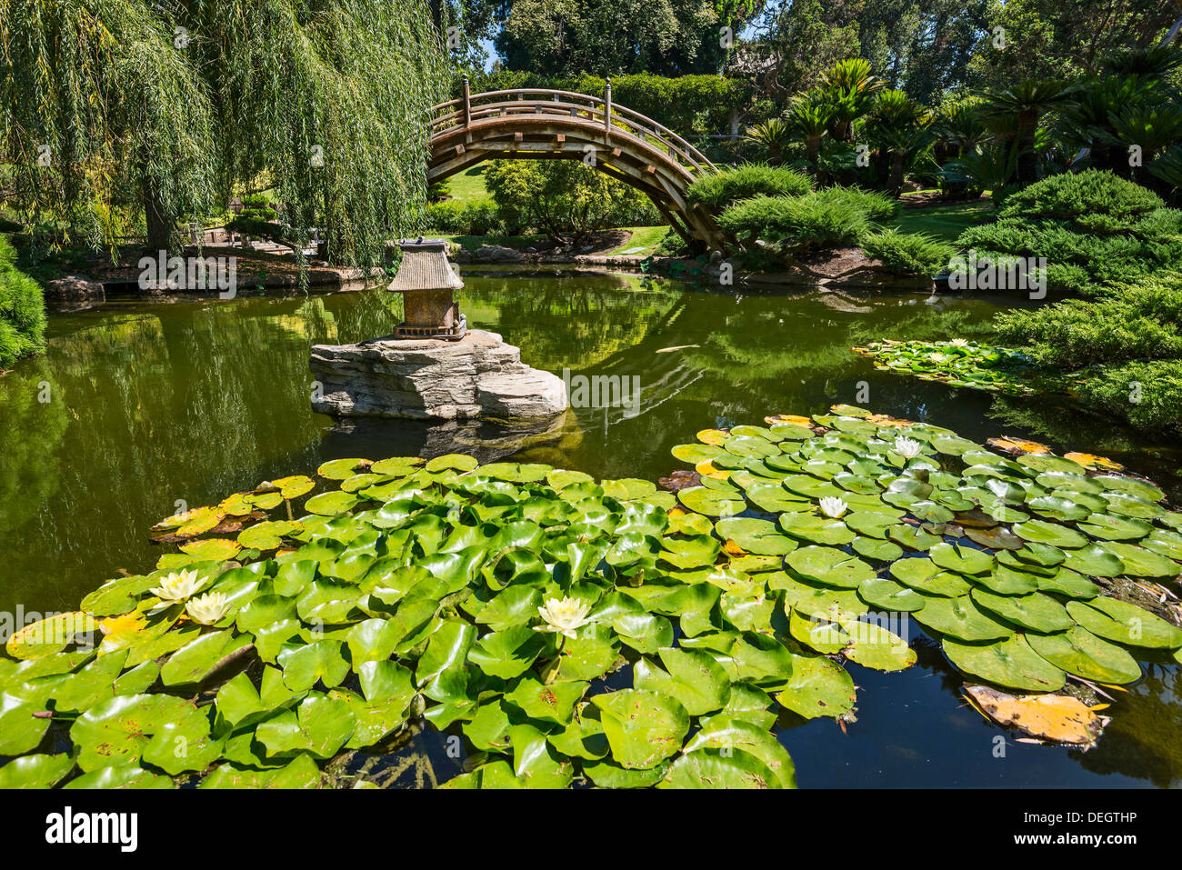 Beautiful The Beautiful Japanese Garden Of The Huntington Library And Botanical  Gardens.