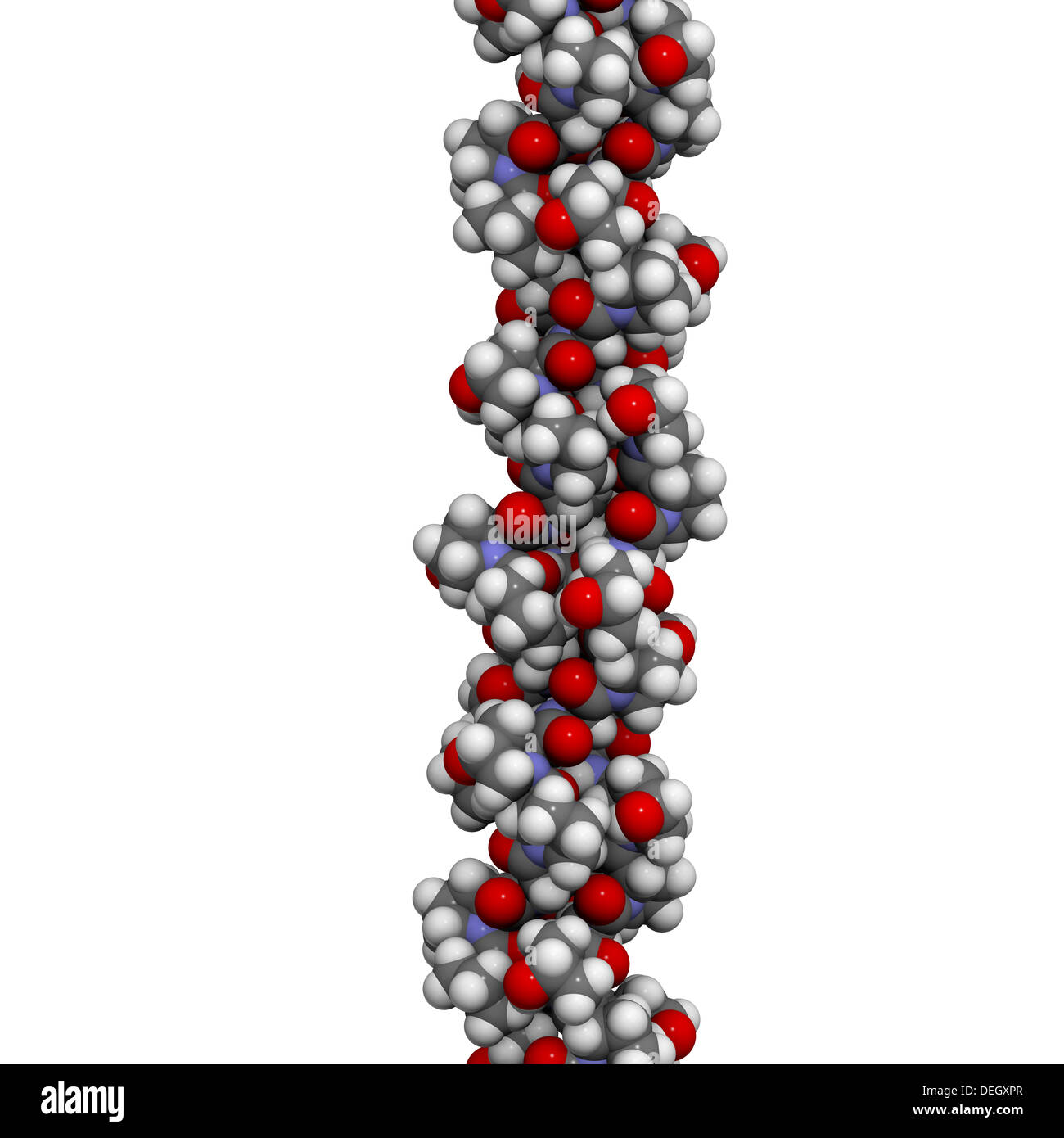 how does the structure of collagen relate to its function
