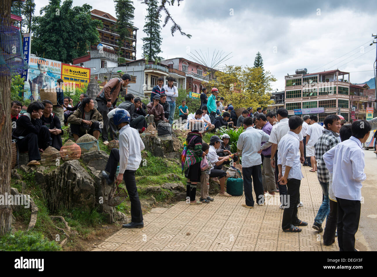 People sale the bird and local stuff in sun day market in Sa Pa, Vietnam - Stock Image