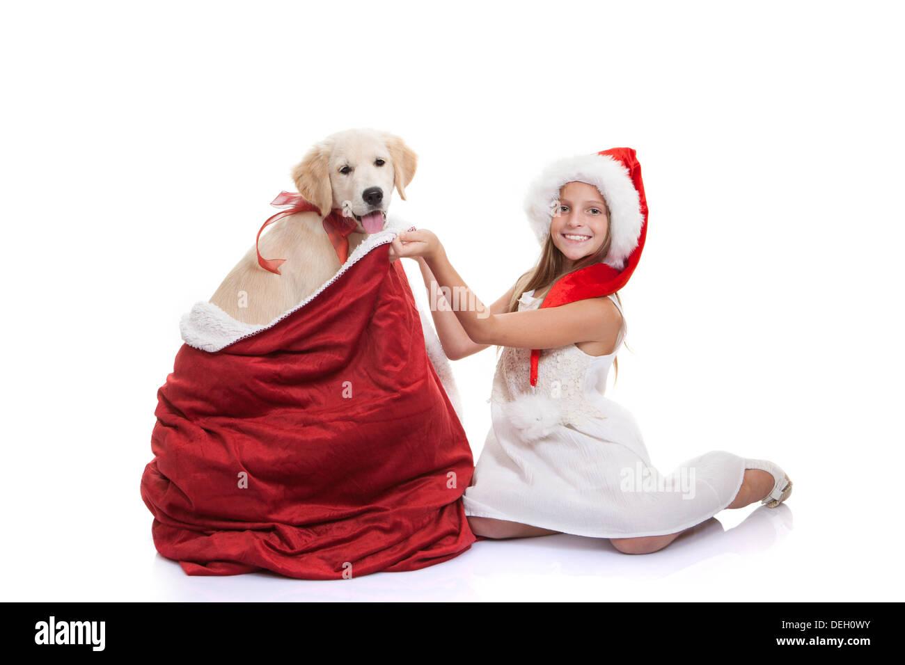 christmas holiday childs pet dog gift - Stock Image