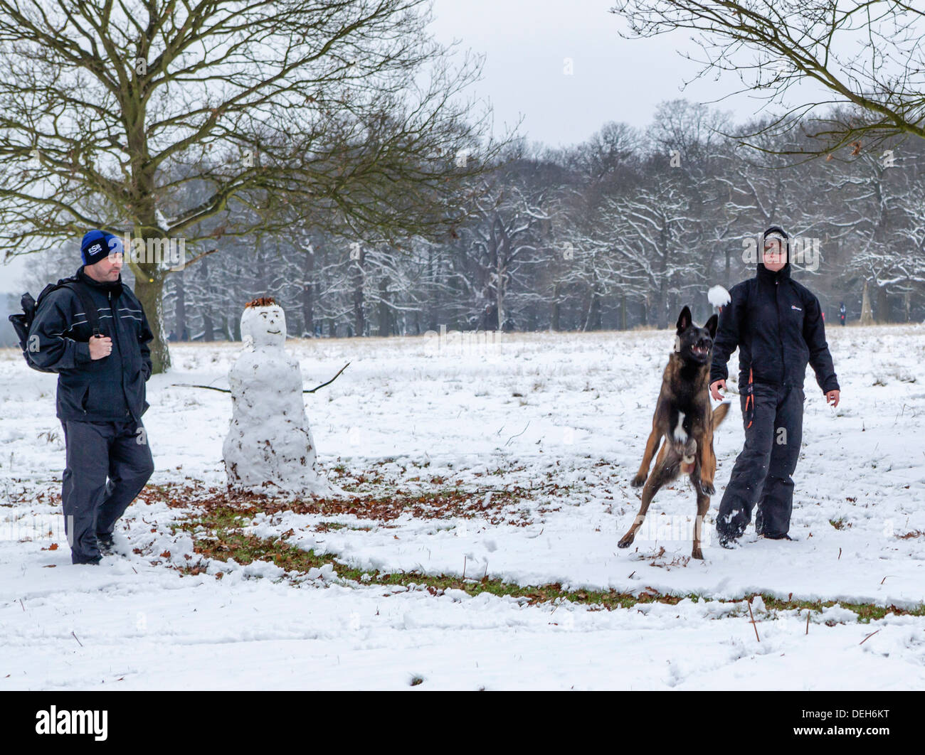 Young couple build snowman and throw snowball for dog to catch in Richmond park after a winter snowfall - Richmond - Stock Image