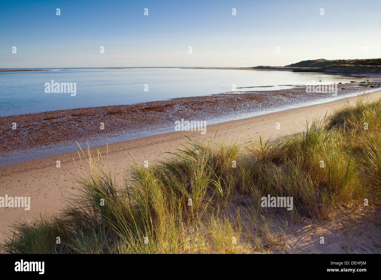 Early morning at Budle Bay on the Northumberland coast near