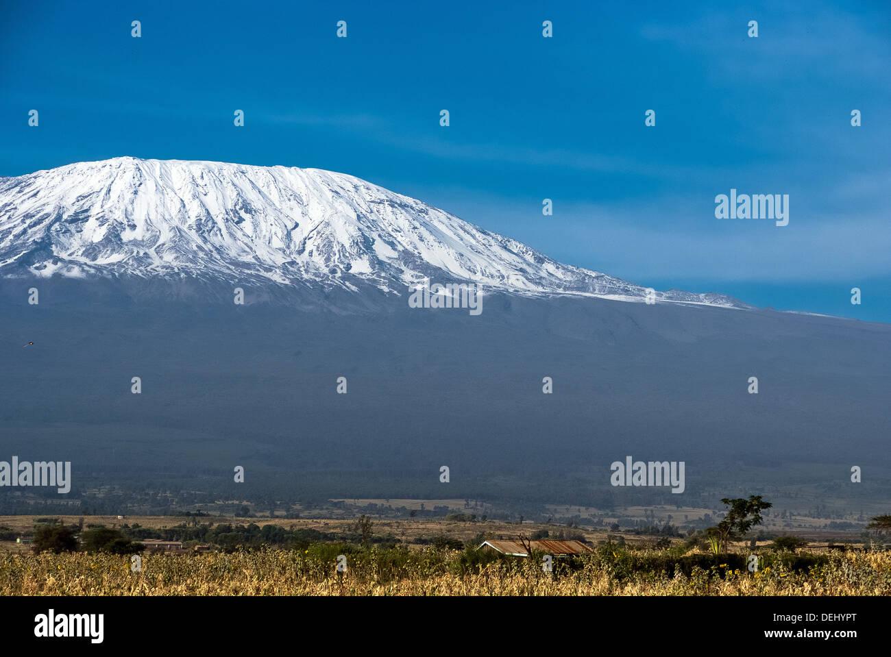 Kilimanjaro - Stock Image