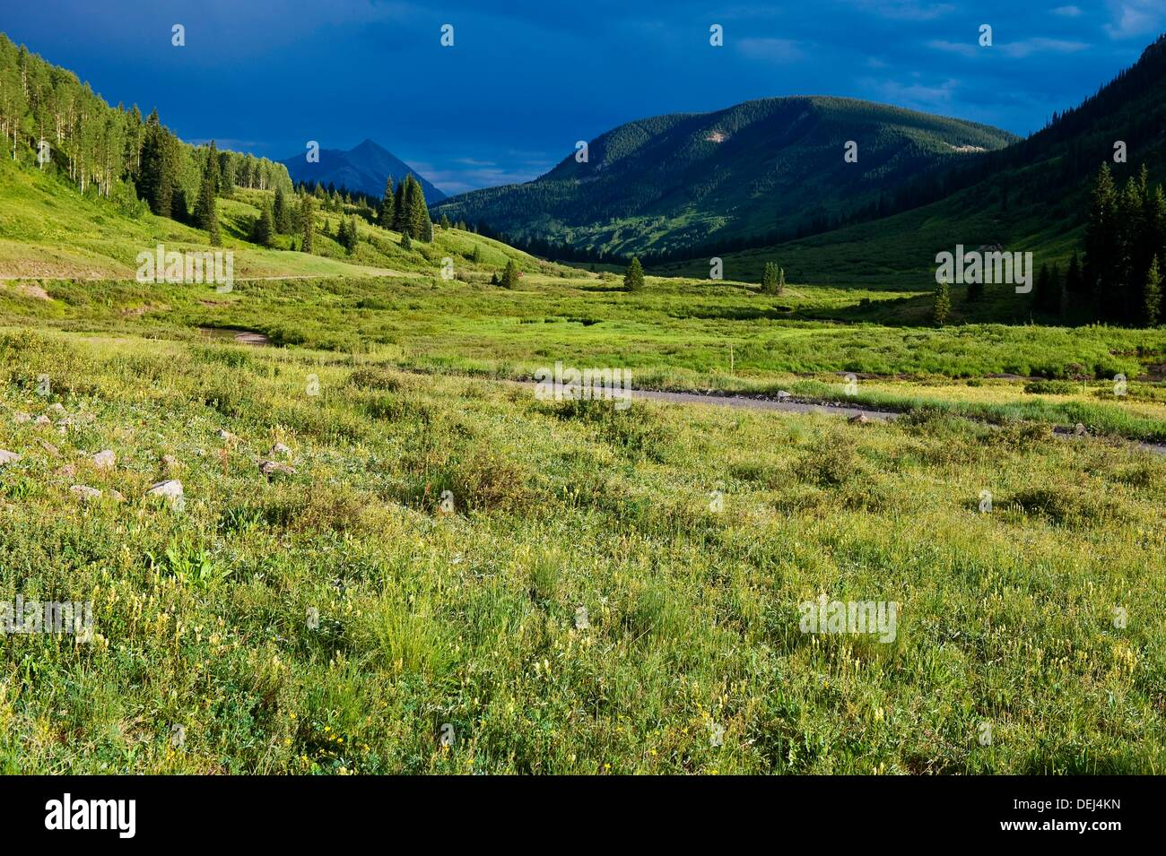 Landscape on Gothic Road, near Crested Butte, Colorado USA - Stock Image