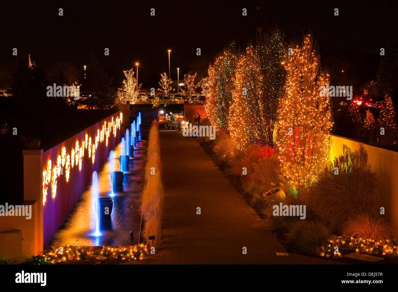 Blossoms of Light , one million lights illuminating the Denver Stock ...