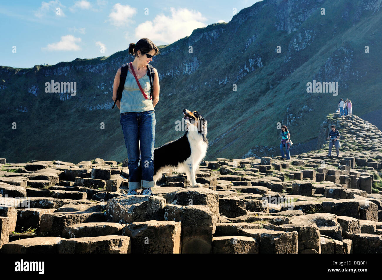 Giant's Causeway, Co. Antrim coast, Northern Ireland, UK. Young woman and border collie on basalt columns of the Grand Causeway - Stock Image