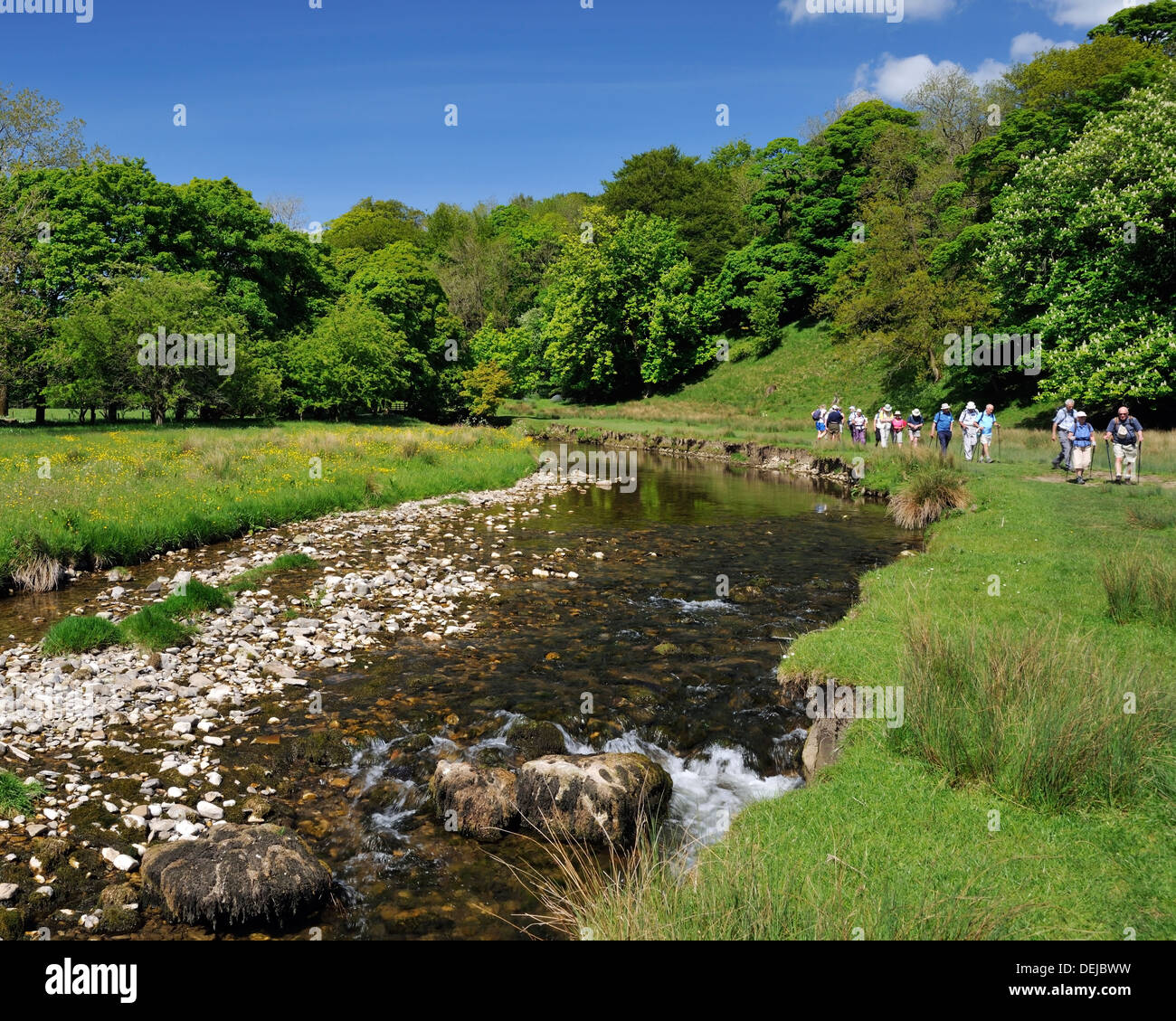 A walking group hiking on the Pennine Way, between Kirkby Malham and Airton, Yorkshire Dales National Park, England - Stock Image