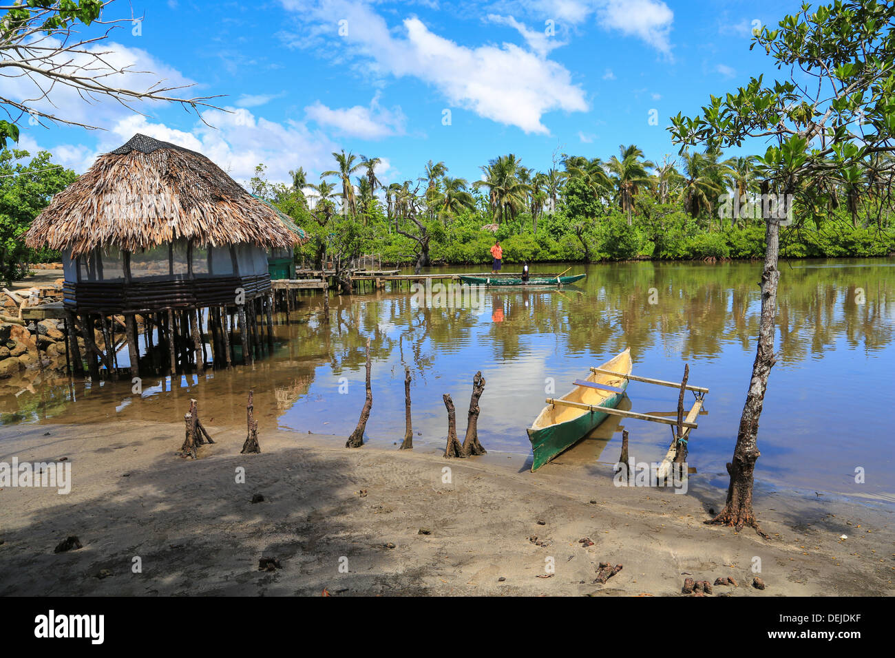 Outrigger canoe on mangrove slough outlet to Safata Bay, Samoa. - Stock Image