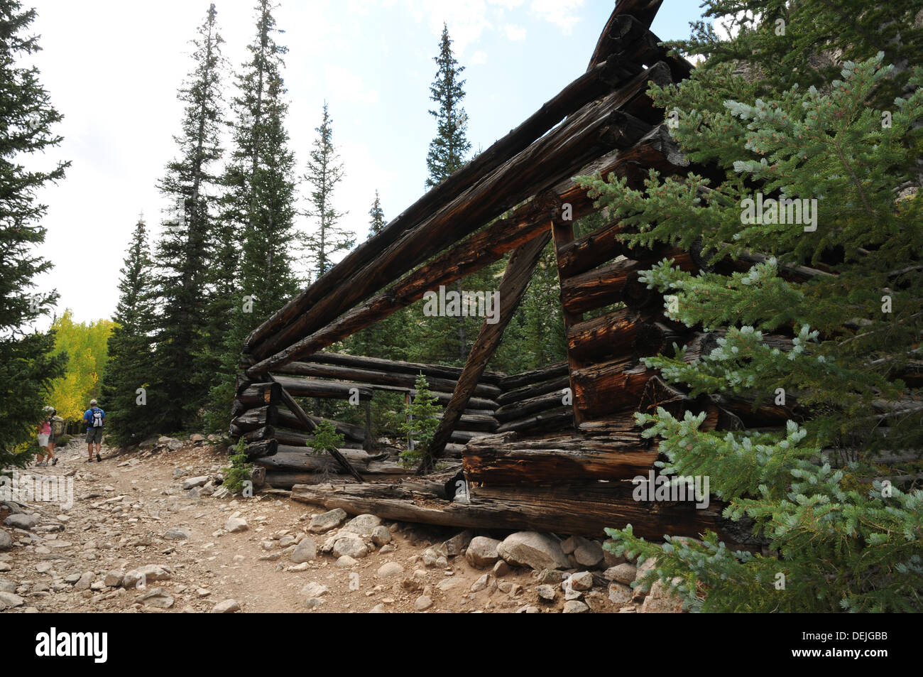 An abandoned mining cabin on the jeep trail up to Grizzly Lake, Chaffee County, Colorado. - Stock Image