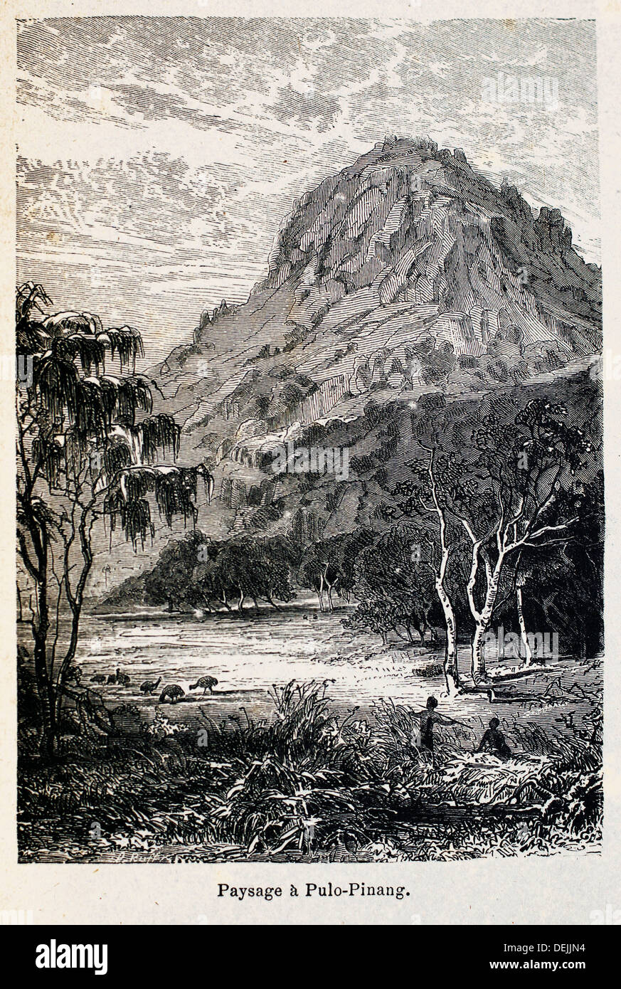 France, Madagascar: ´Paysage à Pulo-Pinang´, from the book ´Madagascar, la reine des Iles Africaines´, 1883 - Stock Image