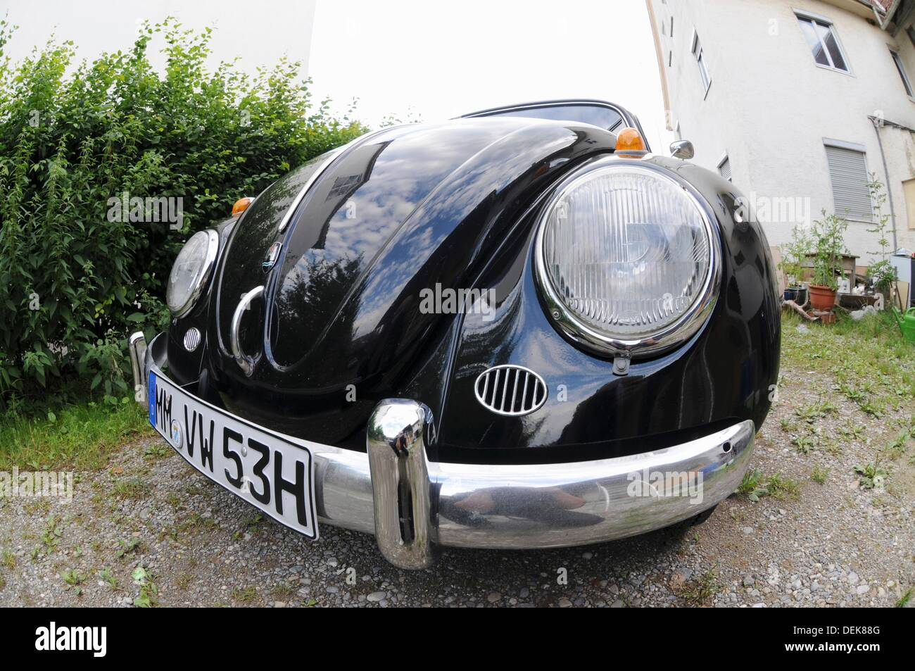 Old VW Beetle from the fisheye perspective - Stock Image