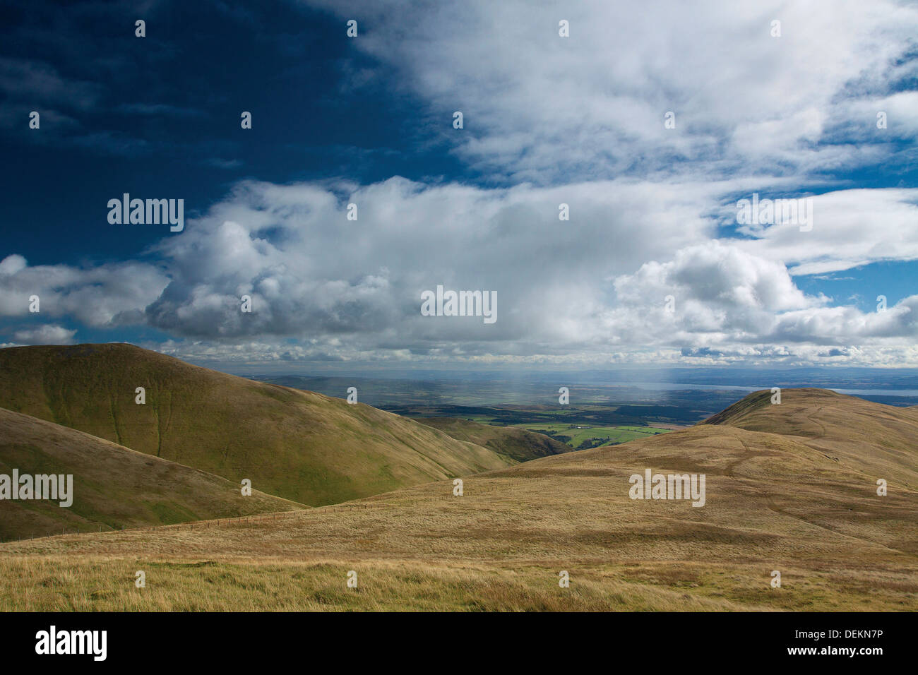 The Law, Wood Hill, The River Forth and the Forth Valley from Ben Ever, the Ochil Hills, Tillicoultry, Clackmannanshire - Stock Image
