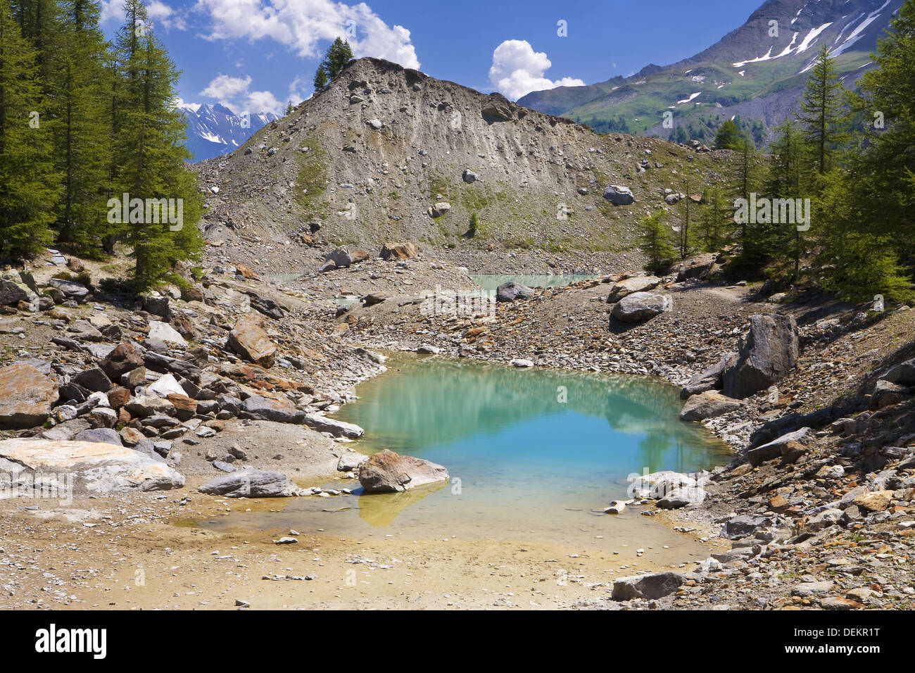 Trees, lake and glacial moraines in Glacier Miage in the massif of Mont Blanc or Monte Bianco in the Italian Alps. Italy, - Stock Image