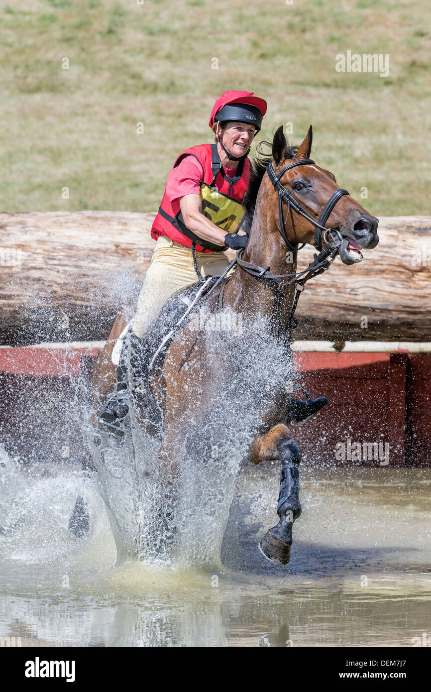 Beanie Sturgis on Wizard from Aus at FBE 2013, Gatcombe Park - Stock Image