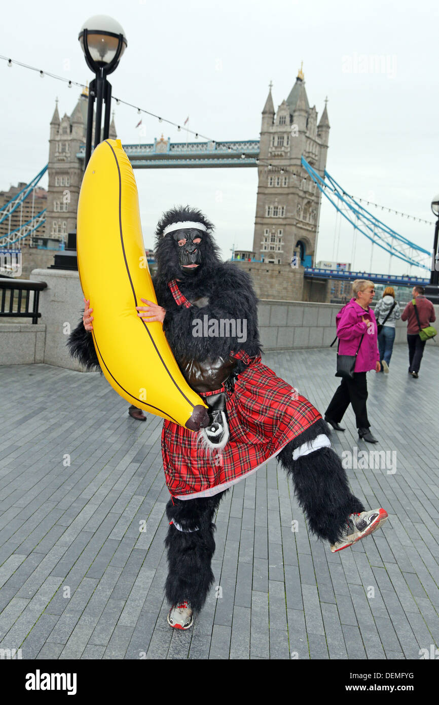 London, UK. 21st September 2013. Participants dressed up as gorillas at Tower Bridge in the Great Gorilla Run 10th Stock Photo