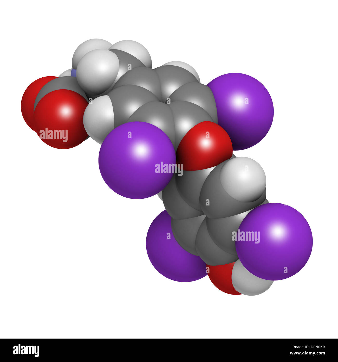 Thyroxine molecule, chemical structure. Thyroid gland hormone that plays a role in energy metabolism regulation. Stock Photo