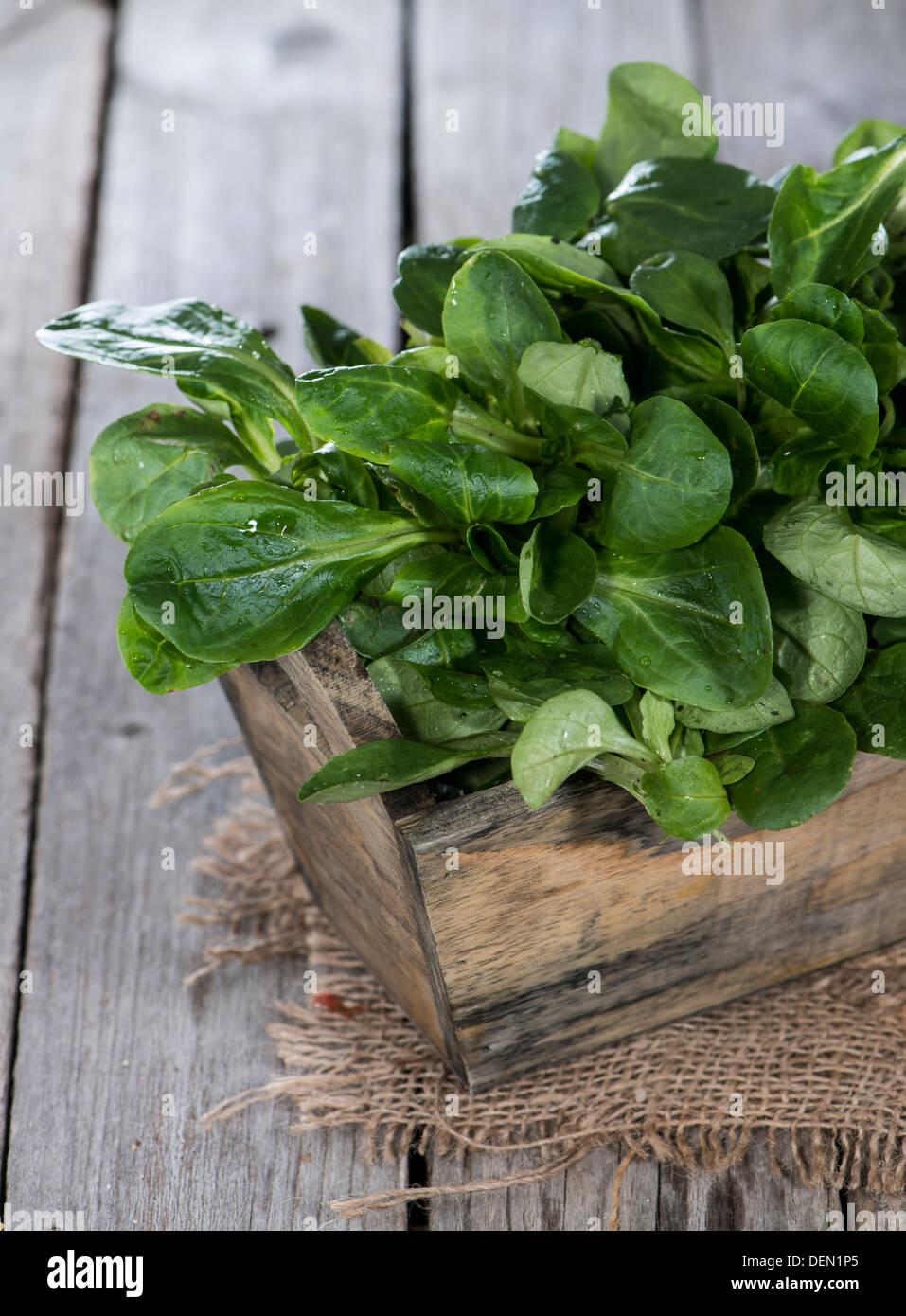 Portion of Lamb's Lettuce on vintage wooden background - Stock Image