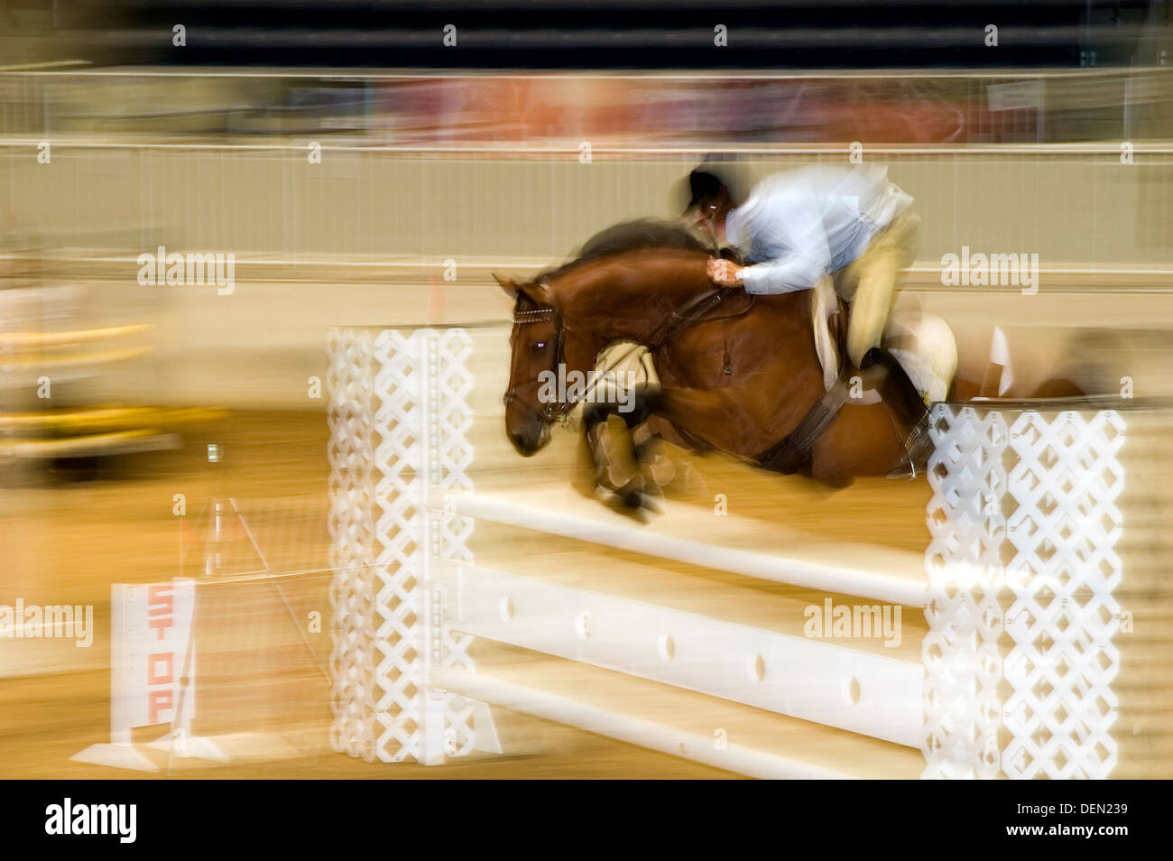Horse jumping Tournament - Stock Image