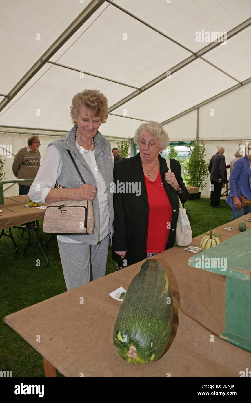 Knockholt, UK. 22nd Sep, 2013. Visitors looked at the marrows at the Bromley In Bloom Competition Credit: Keith Larby/Alamy Live News - Stock Image