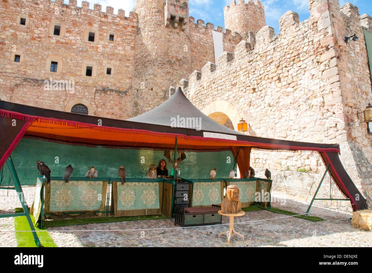 Falconry stall nearby the castle. Medieval Days, Sigüenza, Guadalajara province, Castilla La Mancha, Spain. - Stock Image