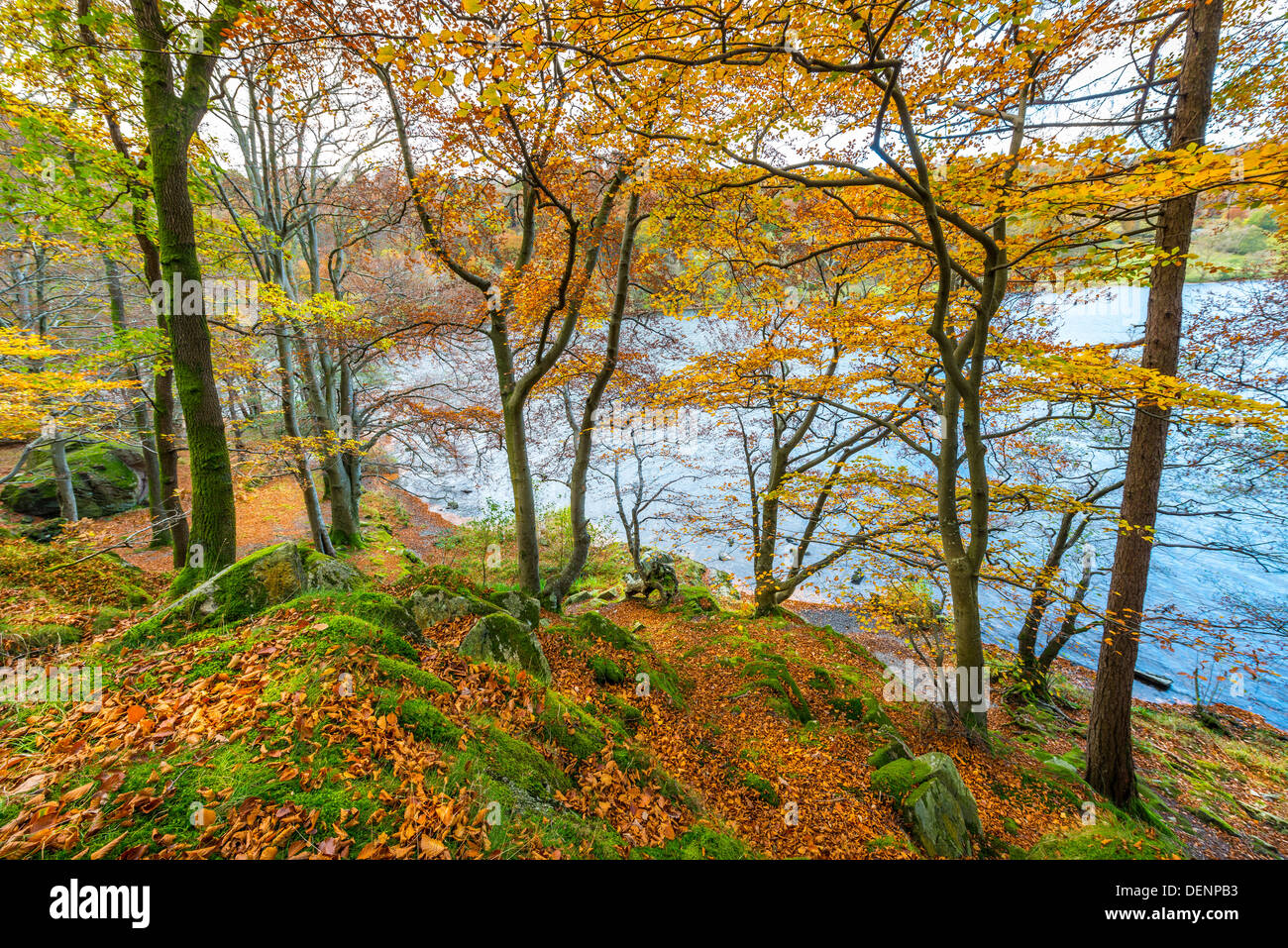 lake district; cumbria; england; uk; europe; - Stock Image