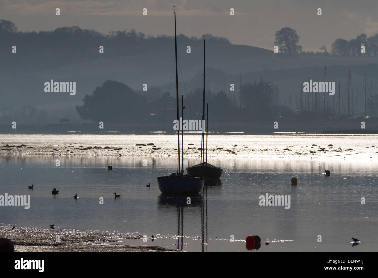 Boats moored on the Exe Estuary at Topsham Devon - Stock Image