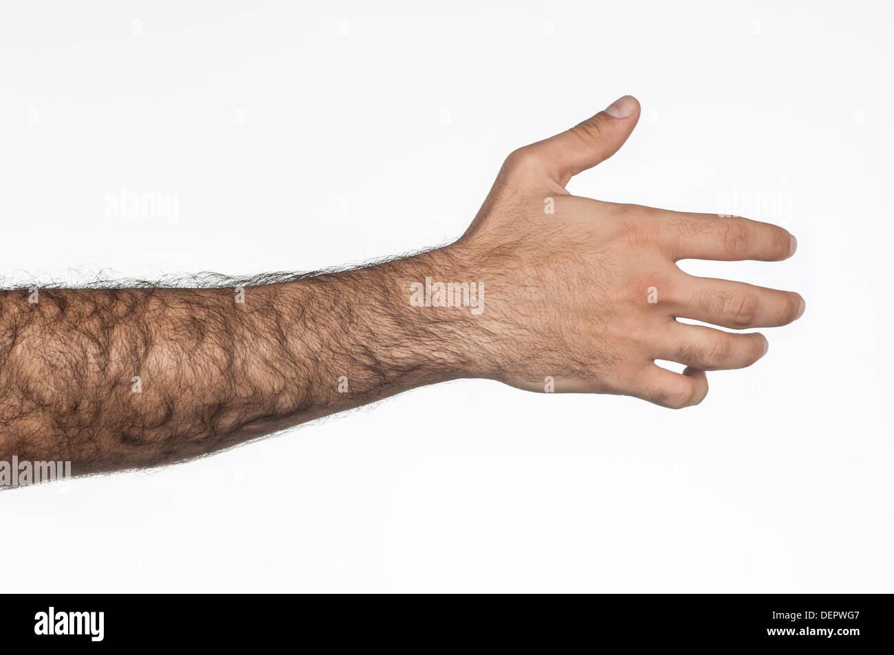 Very hairy thumbs