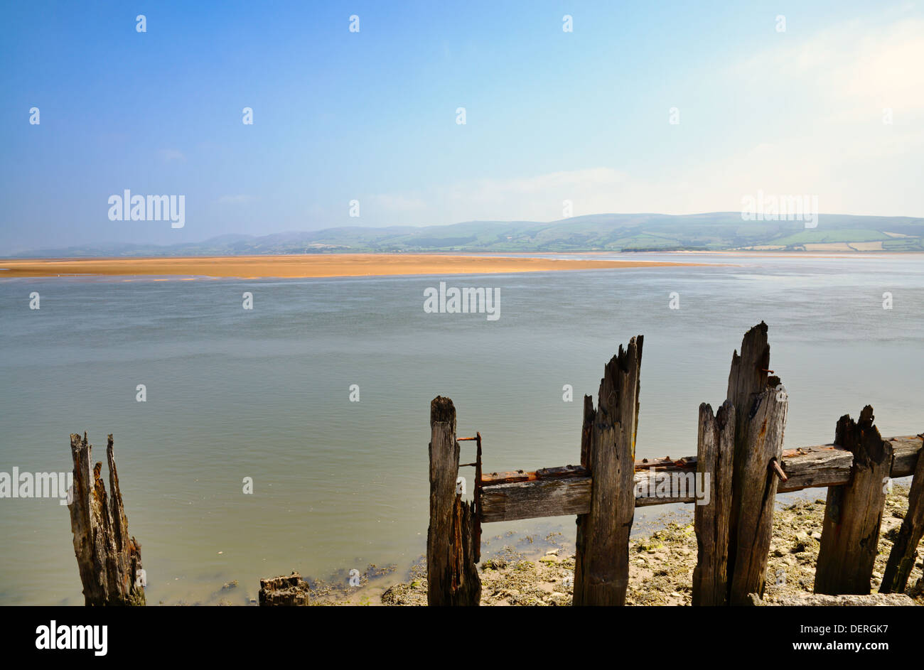 Remains of jagged wooden posts at the edge of Morecambe Bay near Millom - Stock Image