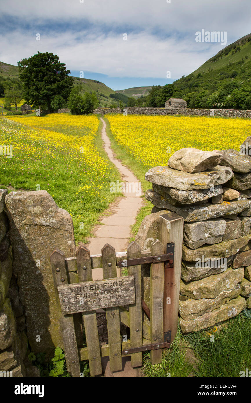 Wild flower meadow near Muker, Yorkshire Dales National Park - Stock Image