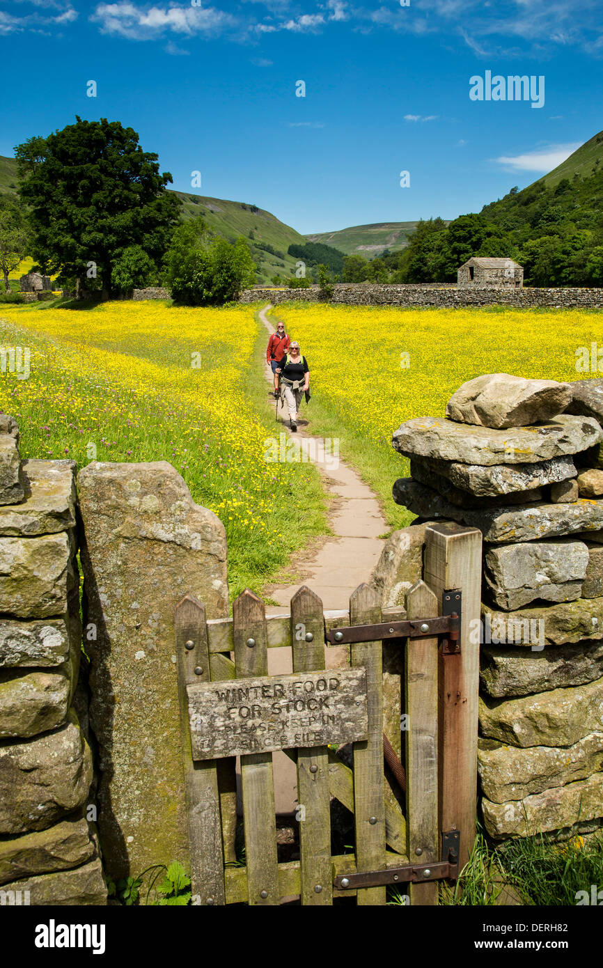 Walkers in wild flower meadow near Muker, Yorkshire Dales National Park - Stock Image