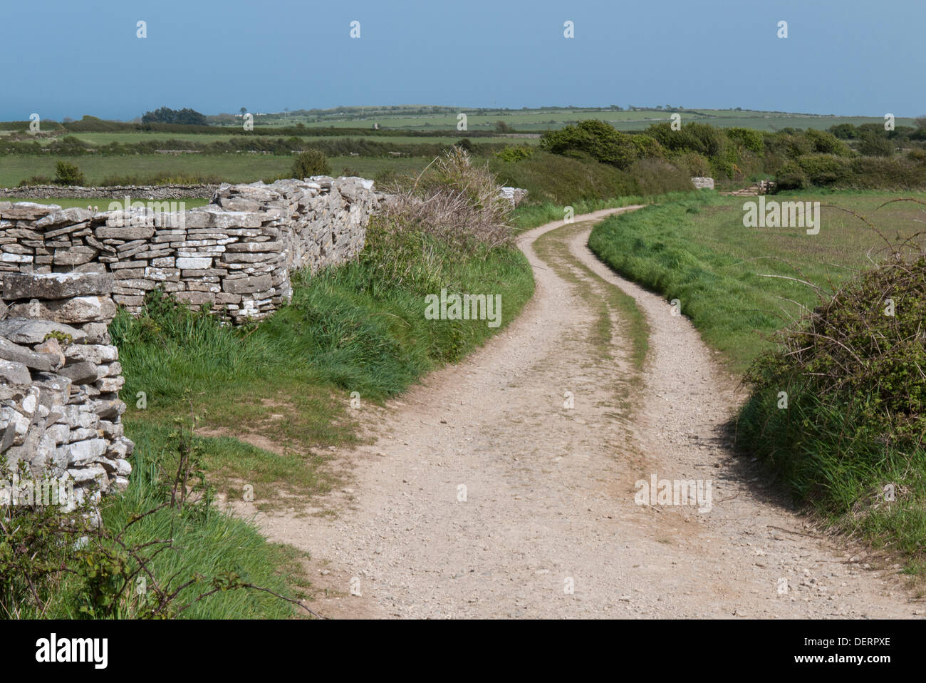 Winding track on the The Priest's Way near Swanage  Dorset England UK - Stock Image