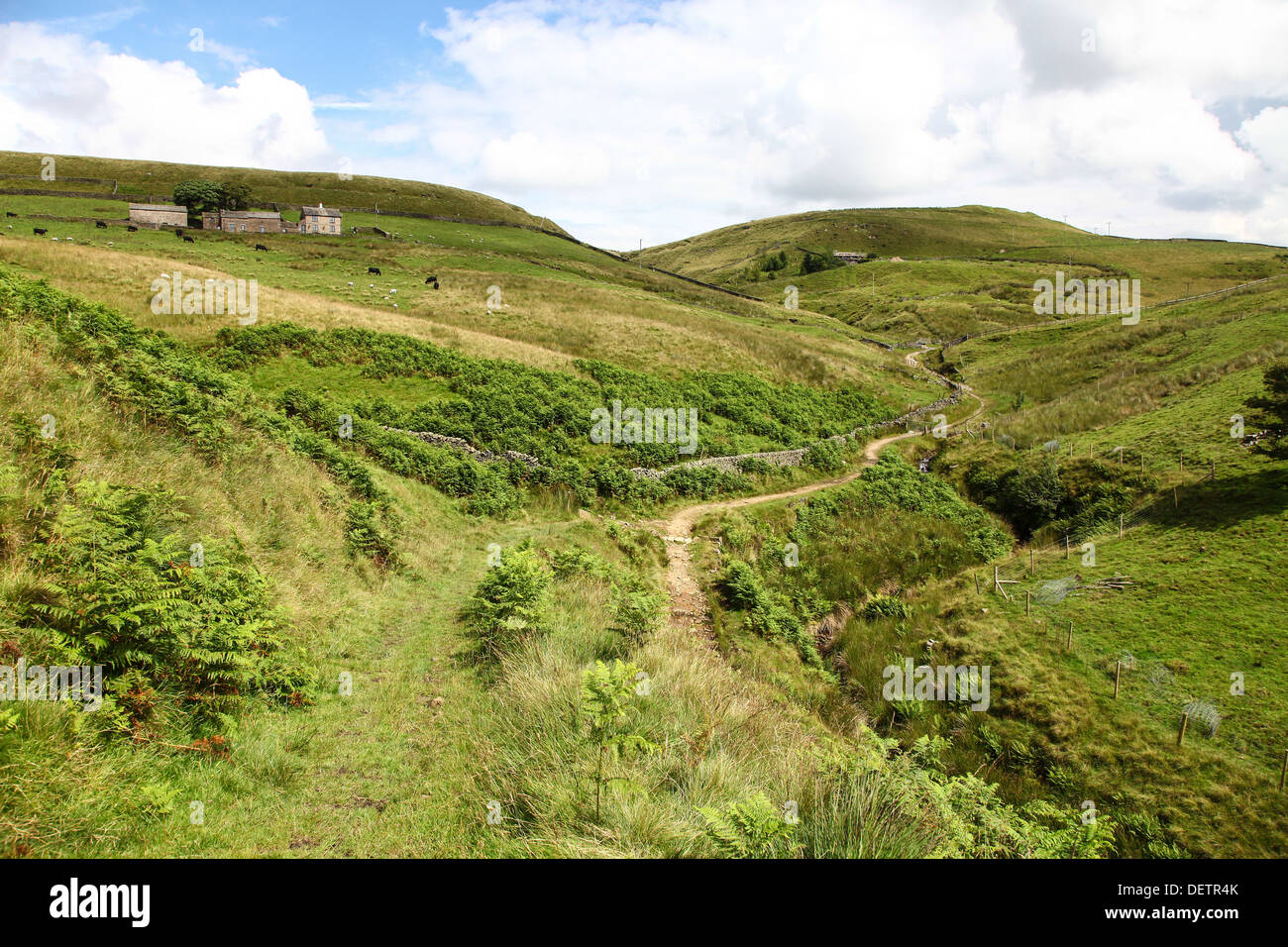 A path weaving it's way up the moorlands at Blackclough Derbyshire England UK - Stock Image
