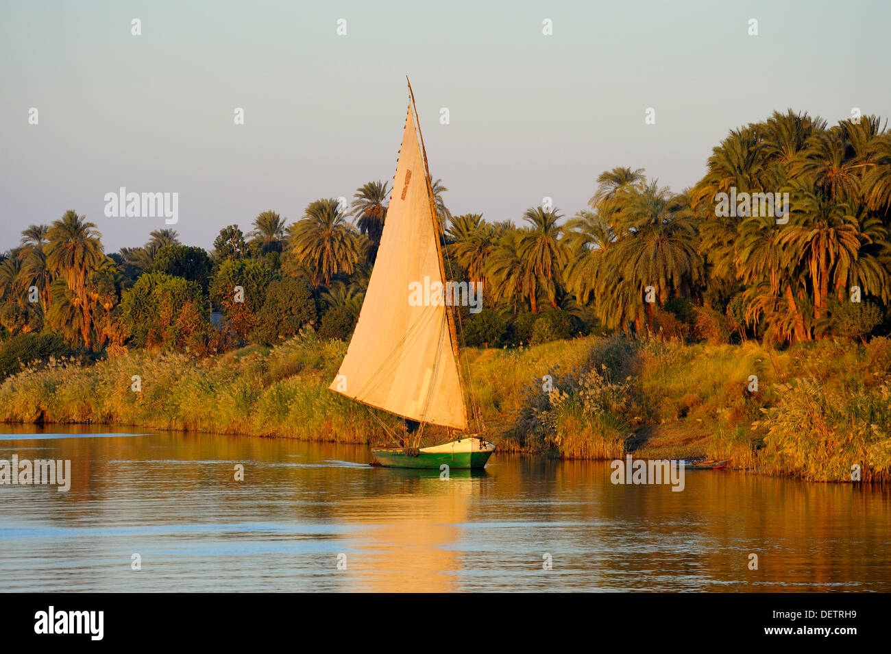 Felucca under sail on River Nile between Aswan and Luxor, Upper Egypt - Stock Image