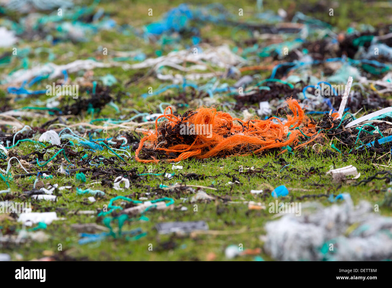Rubbish on the Beach; Papa Stour; Shetland; UK - Stock Image