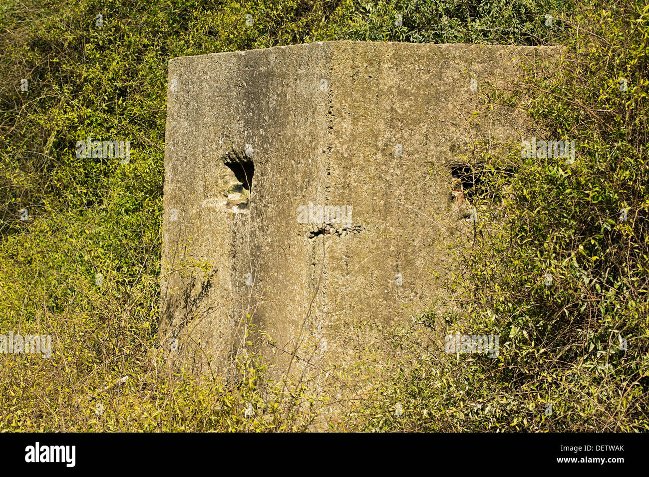 Old ruin of a an allied world war two bunker in the uk commonly called a pillbox - Stock Image