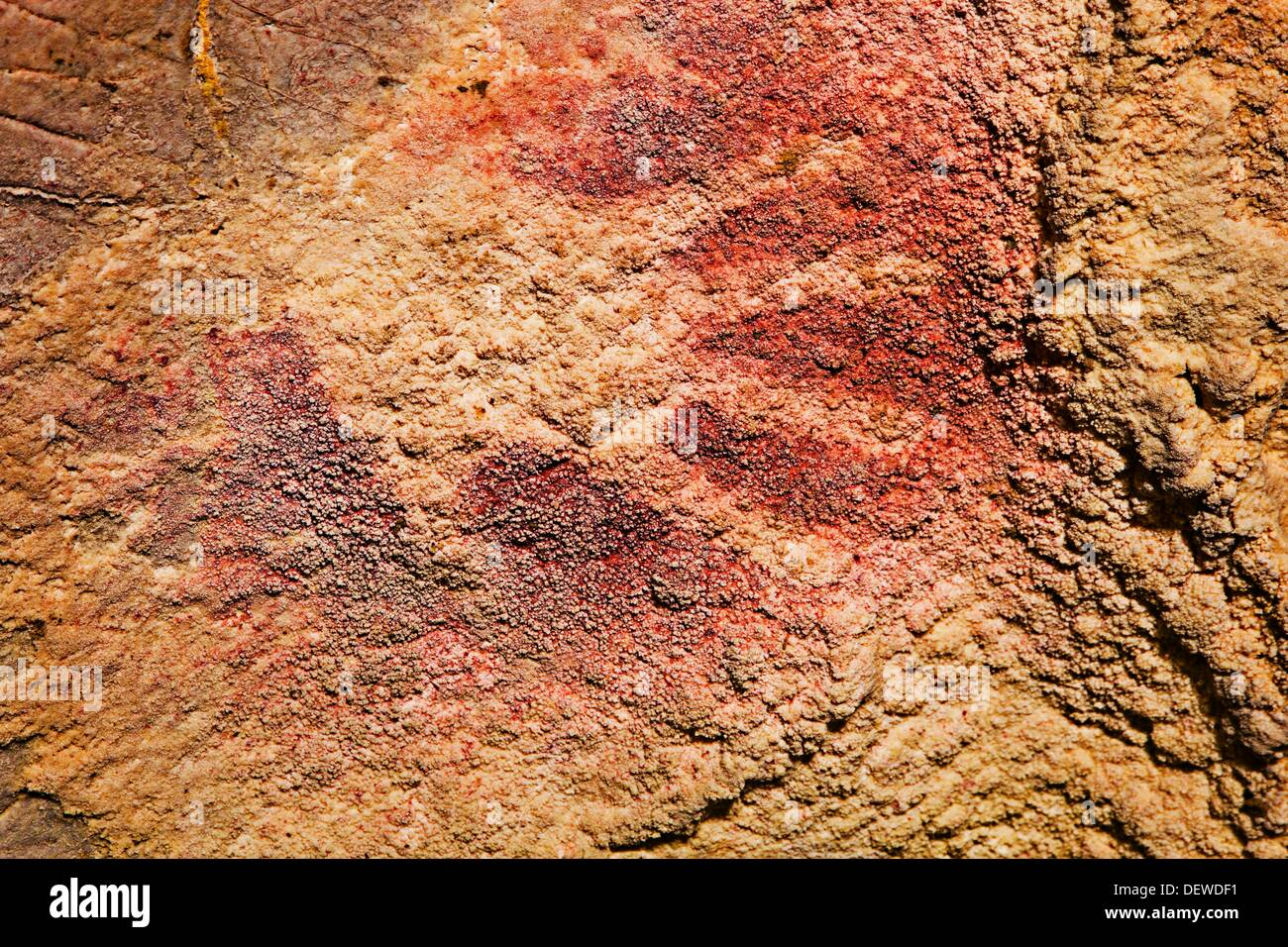 The frieze of the hands  Paleolithic  Monte Castillo caves  Puente Viesgo  Pas valley  Cantabria  Spain. - Stock Image