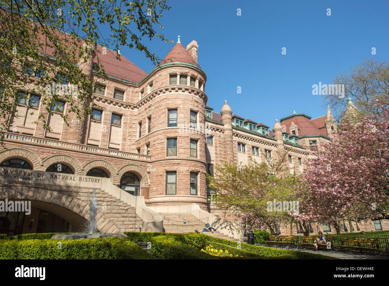 AMERICAN MUSEUM OF NATURAL HISTORY UPPER WESTSIDE MANHATTAN NEW YORK CITY USA - Stock Image