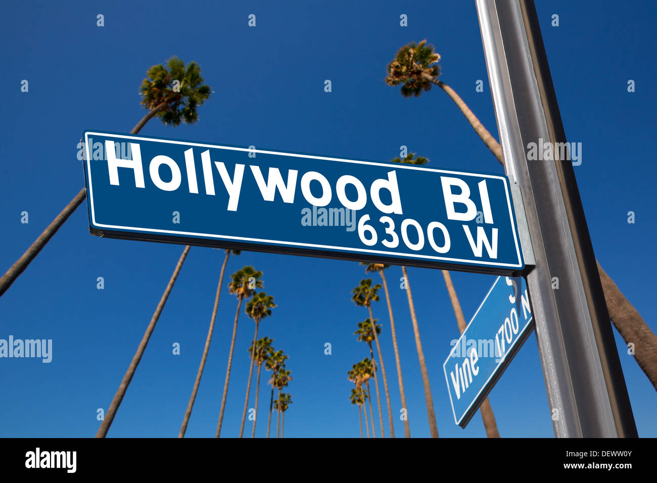 Hollywood Boulevard with vine sign illustration on palm trees background - Stock Image