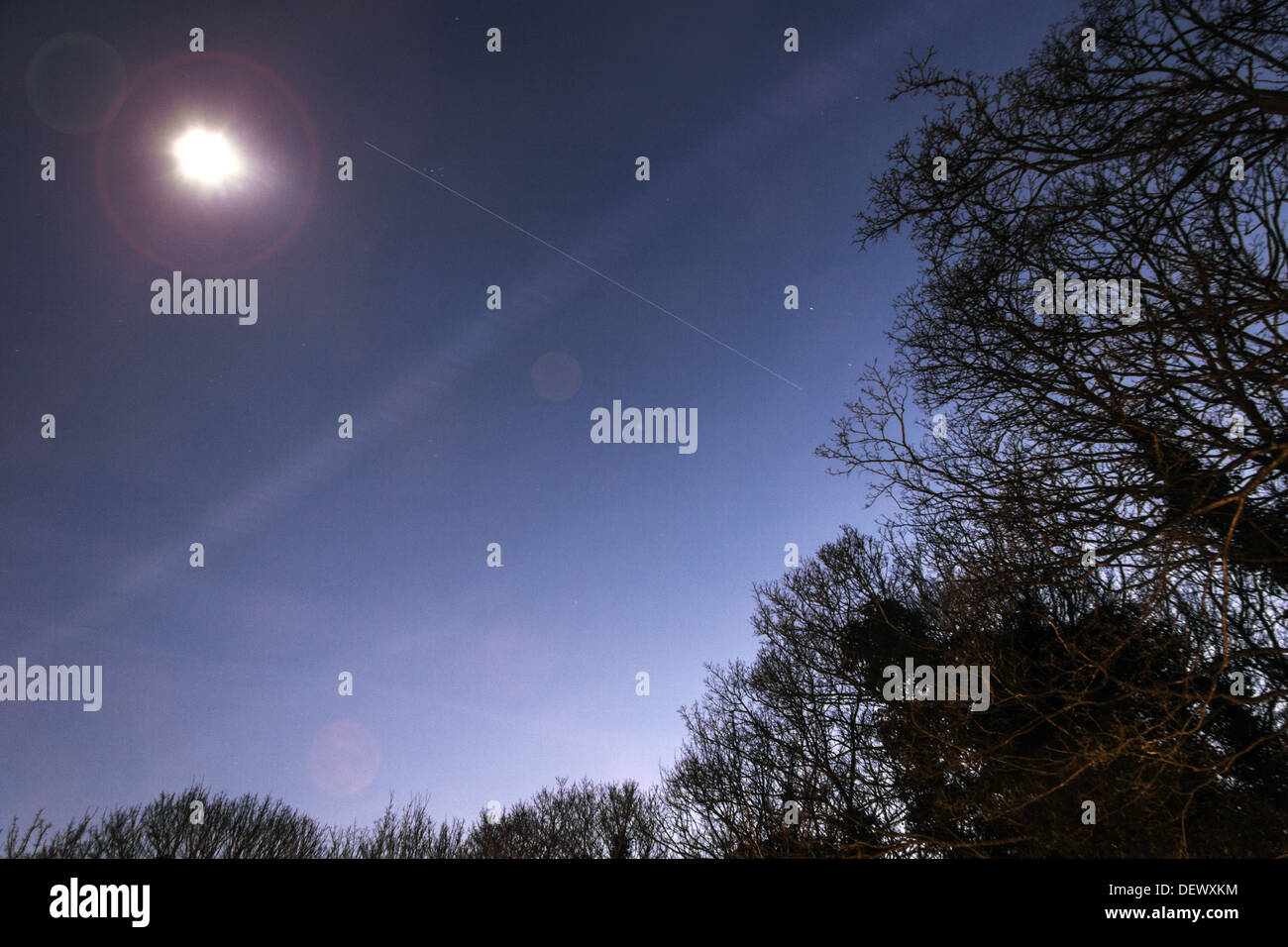 The International Space Station (ISS) passes over some tree's - Stock Image