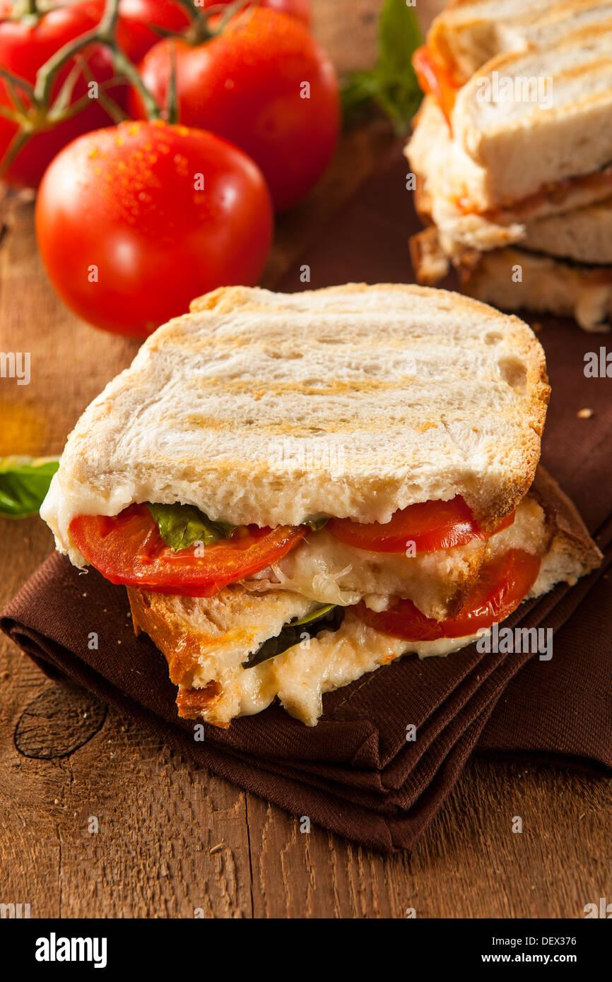 Homemade Tomato and Mozzarella Panini with Basil - Stock Image