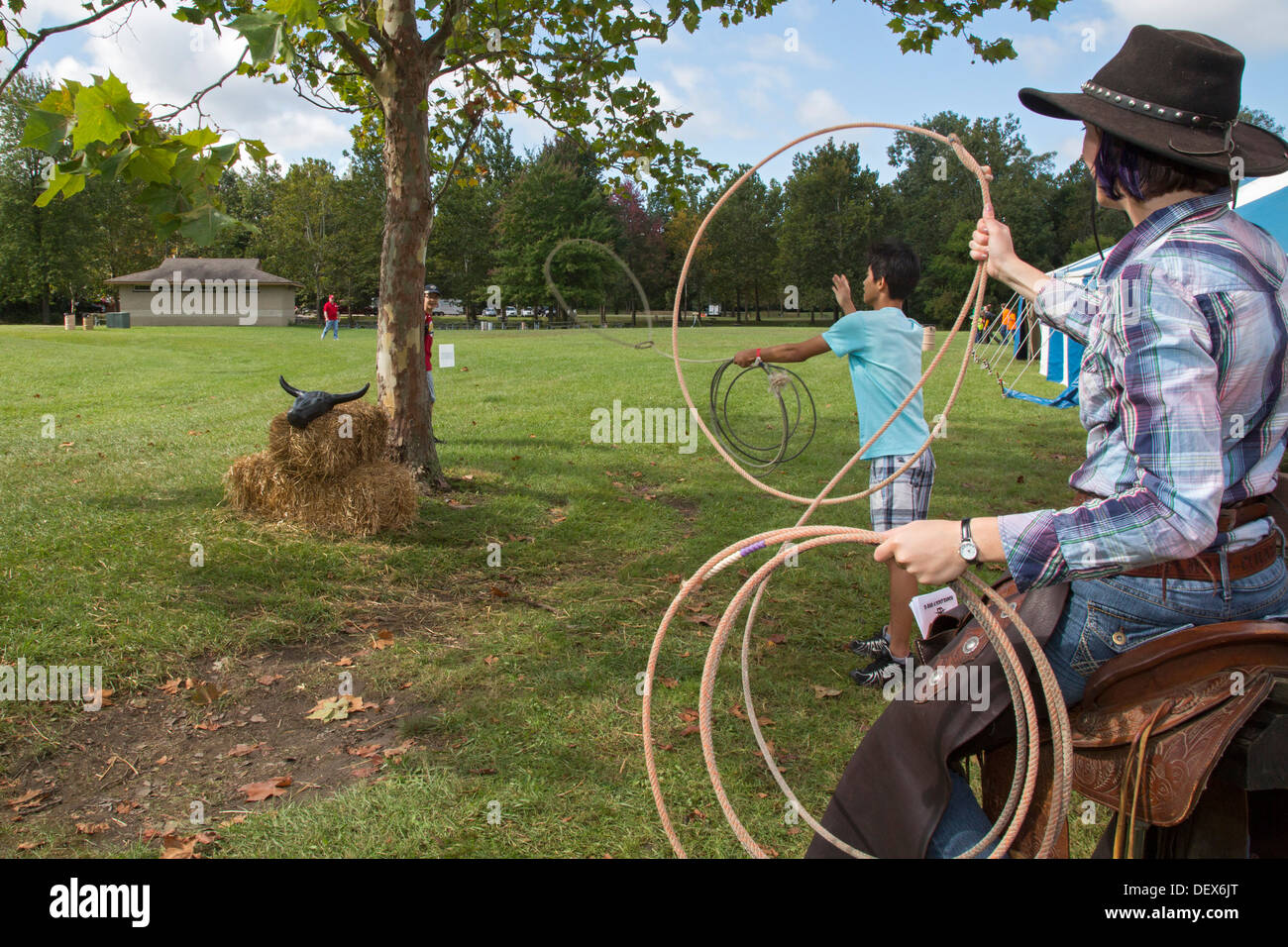 A Boy Scout tries to lasso the horns of a bull during a Scout gathering in a suburban Detroit park. - Stock Image