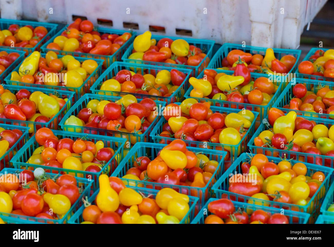 Organic tomatoes at farmers market in upscale California city near San Francisco - Stock Image