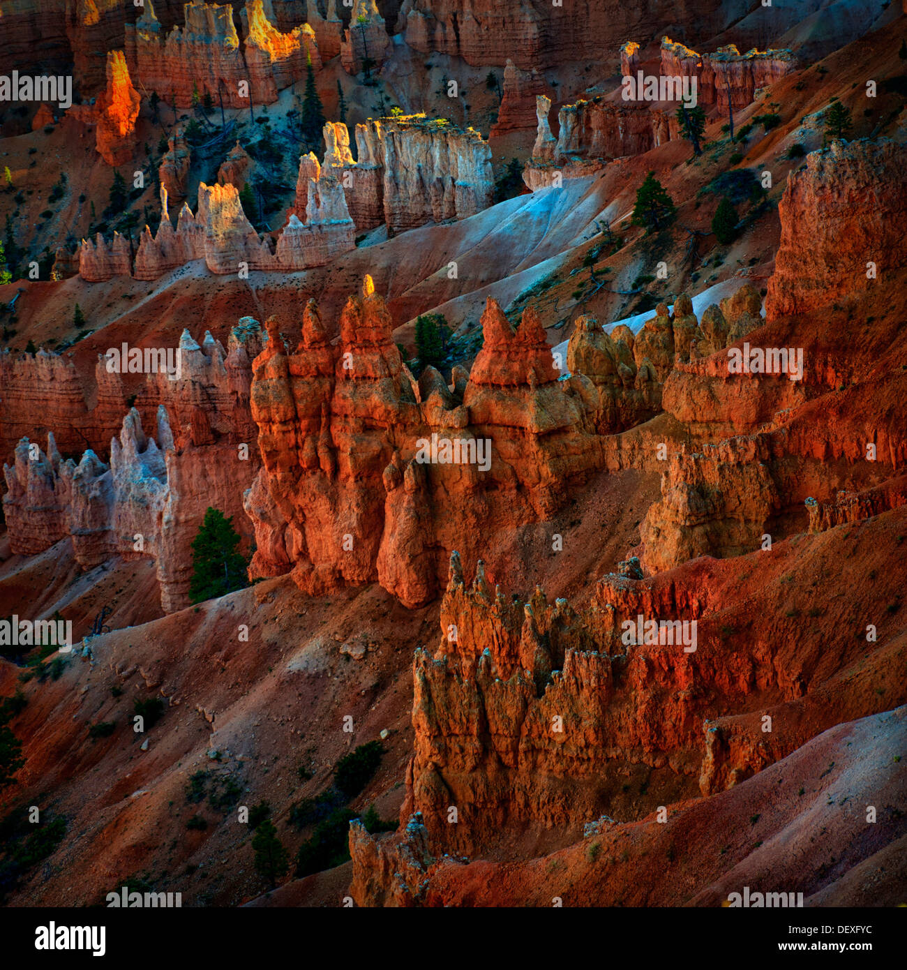 Bryce Point,Bryce Canyon National Park, high quality ,high resolution,square format image Stock Photo